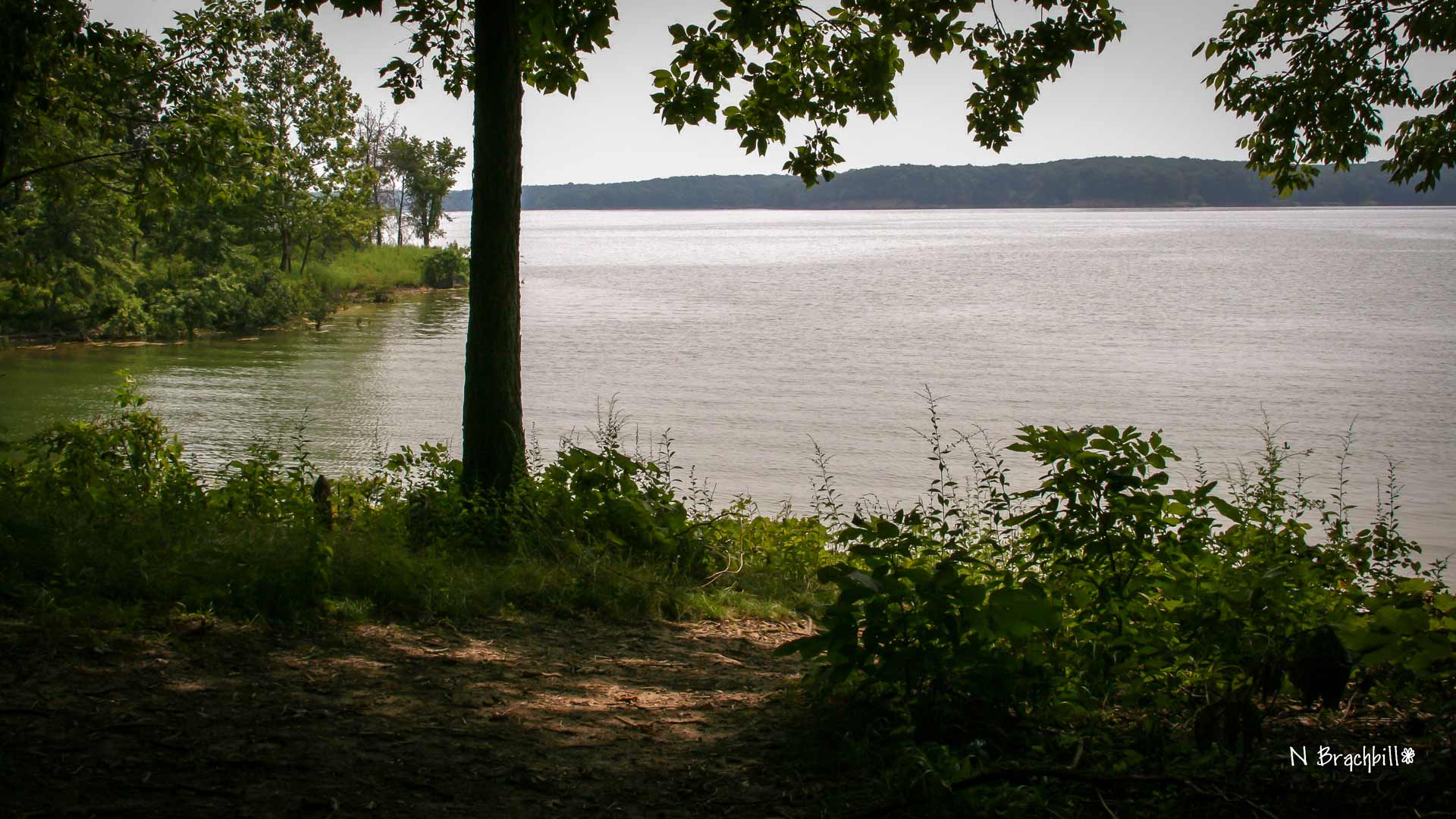 nature-trails-lake-shelbyville